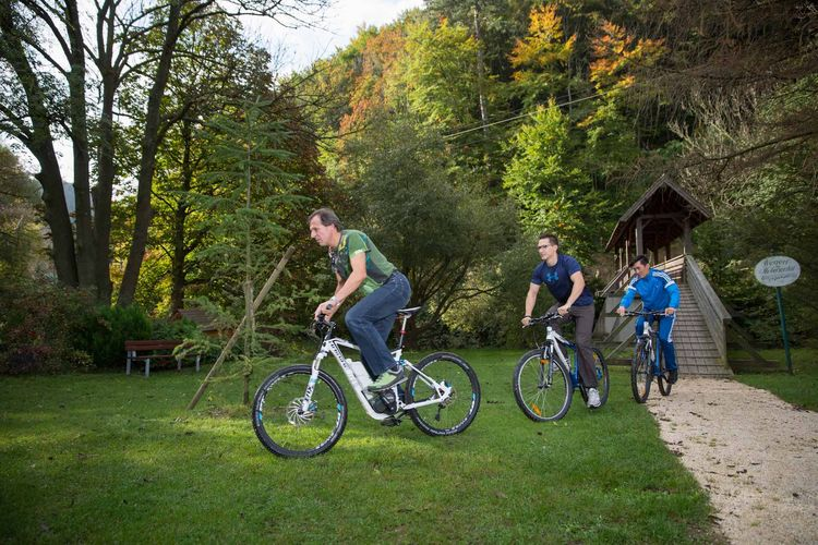 biking in the Wienerwald
